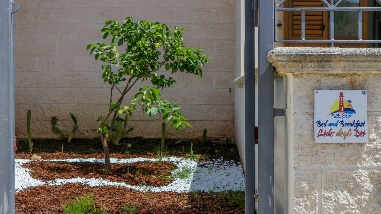 giardinetto di ingresso al bed&breakfast Lido degli Dei di Madeingallipoli